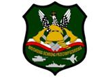 wojskowa ochrona przeciwpożarowa